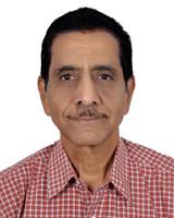 Mr. Anil Pandit<br /> Global Industrial Advisory Forum